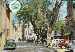 83 - Très Belle Carte Postale Semi Moderne Dentelée De BESSE SUR ISSOLE  Le Cours - Besse-sur-Issole