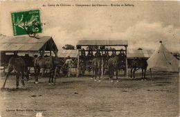 CPA Camp De CHALONS - Campement Des Chaveaux (364751) - Camp De Châlons - Mourmelon