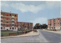 CPSM - MORANGIS - RUE Louis Guy WARABIOT ... (Cité Immeubles) - Edition Combier - Francia