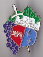 PIN'S THEME VILLE DE CASTILLON LA BATAILLE EN GIRONDE  LA VIGNE  LE RAISIN  VGNOBLE COTES DE CASTILLON - Cities