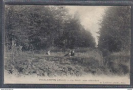 Carte Postale 59. Phalempin Une Clairière Dans La Forêt  Trés Beau Plan - France