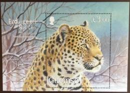 Guernsey 2009 Amur Leopard Minisheet MNH - Raubkatzen