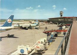 Roma Aeroporto Leonardo Da Vinci  (2668) - Transports