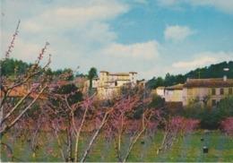 83 Montfort Sur Argens Le Château - S44 - Altri Comuni