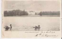 MONTREAL EN PUISAYE. CPA Voyagée En 1902 Le Château - Montreal