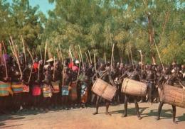 Nord Cameroun - Doukoula - Danseurs Toupouri (beau Timbre) - Cameroun