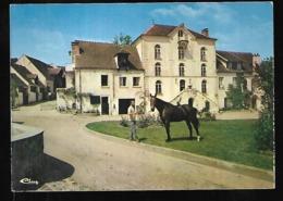 Cpm 7820364 Buc Haras De Vauptain , Cheval - Buc