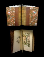 [CURIOSA EROTISME] BRANTOME / LAMBRECHT (William Adolphe, Ill. De) - Les Vies Des Dames Galantes. 2/2. - 1801-1900