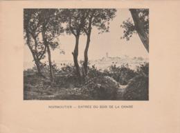 NOIRMOUTIER - Entrée Du Bois De La Chaise - Photogravure Fin 19 ème De Jules Robuchon   17.2x13 - Documents Historiques
