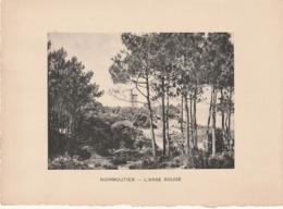 NOIRMOUTIER - L'anse Rouge- Photogravure Fin 19 ème De Jules Robuchon   18x13 - Documents Historiques