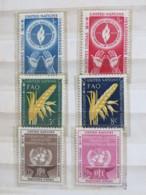 United Nations (New York) 1953 - 1954 MINT Stamps - FAO - Wheat - OIT ILO - Human Rights - New-York - Siège De L'ONU
