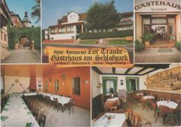 AK Laubach Hotel Restaurant Zur Traube Gästehaus Am Schloßpark A Grünberg Reiskirchen Mücke Lich Hungen Schotten Gießen - Laubach