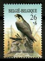 Belgium 1987 Bélgica /  Birds Eagle MNH Vögel Aves Oiseaux Uccelli / Cu12035  18-21 - Pájaros