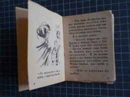 Cx 10) MAJORA Conto Infantil Portugal Ilustrado César Abbott A PATA REAL 9,8X7,5cm Coleção Formiguinha - Libros, Revistas, Cómics