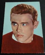 Schauspieler JAMES DEAN (Portrait) # Alte ISV-Star-Foto-AK # [19-4108] - Actores