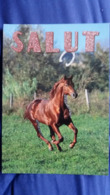 CPM CHEVAL GAMBADANT SALUT LETTRES PAILLETEES ED AS PHOTO SOULIER - Chevaux