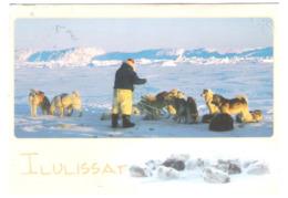 Grönland - Greenland - Ilulissat - Nice Stamp Timbre - Groenlandia