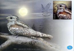 2019 Estonia, Bird Of The Year, Nightjar, FDC - Birds