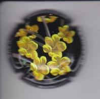 PLACA DE CAVA BUTI MASANA DE UNAS FLORES (CAPSULE) Viader: 12190 - Placas De Cava