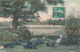Les Petits Gardiens Des Dindons - Série A La Campagne - 1909 - Coll. Marchand De Et Circulée De Sully N° 1001 - Sully Sur Loire