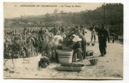CPA 51 : Vendanges En Champagne Très Animées    A  VOIR  !!!!!!! - France
