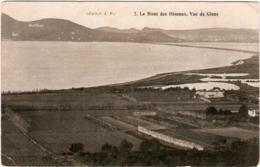 3PSG 644. LE MONT DES OISEAUX - VUE DE GIENS - Francia