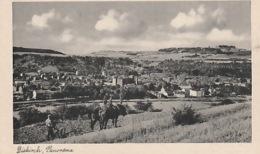 19 / 10  / 464.  -  DIEKIRCH  ( LUXEMBOURG ). PANORAMA - Diekirch