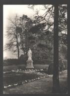 Bois De Breux / Grivegnée - Clinique N-D Des Bruyères - Un Coin Du Parc - Liege