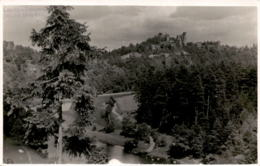Cornstyn - Zornstein * 20. 8. 1931 - Czech Republic