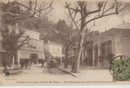 C. P. - GORGES DU LOUP - ROUTE DE NICE - ETABLISSEMENTS JACOB GAZAGNAIRE - GILETTA - ANIMEE - HOTEL DES GORGES DU LOUP E - Frankreich