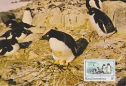 Polaire Néozélandais, N° 15 Sur CP Max + 17 Et 20 Obl. Wellington Le 17 MR 89 + Ganovex Et Gondwana Station - Maximum Cards