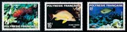 POLYNESIE 1981 - Yv. 160 161 Et 162 **   Cote= 4,70 EUR - Poissons (3 Val.)  ..Réf.POL24483 - Neufs