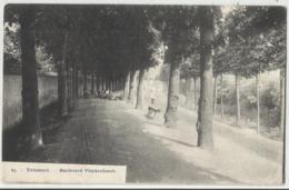 Tienen - Tirlemont - Boulevard Vinckenbosch 1910 - Tienen