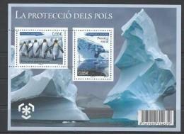 """Andorre Bloc YT 2 """" Protection Des Zones Polaires Et Des Glaciers """" 2009 Neuf** - Blocks & Kleinbögen"""