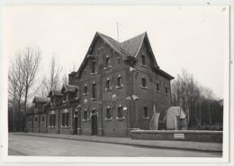 Viersel Dijkstraat - Zandhoven Molen Moulin Foto 12.5 X 8.8 Cm - Zandhoven