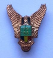 Romania, 1981, Vintage Military Pilot Pin / Badge - Associazioni