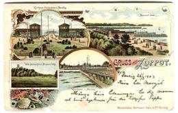 GRUSS AUS ZOPPOT Sopot Gdańsk Danzig Color Litho Sent 1903 - Please Notice Hole Bottom Left - Polonia