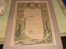 DIPLOMA MENZIONE ONOREVOLE DI PRIMO GRADO 1894 - Diplomi E Pagelle