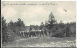 VLIMMEREN - De Mechelsche Katholieke Schoolkolonisten Op Wandel Te Vlimmeren (Beerse) - Beerse