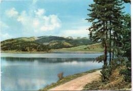 BELLEZZE Di CALABRIA - SILA - Lago Ampollino M. 1400 - Italy