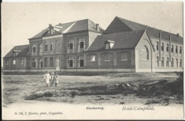 Heide-Calmpthout - Diesterweg (Kalmthout, Uitg Hoelen Nr N. 126) - Kalmthout