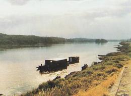 Indre Et Loire        H407         Chouze Sur Loire ( Bateau Sur La Loire ) - France