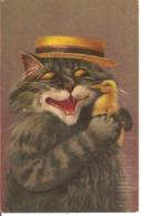 Chat Tenant Un Poussin. - Katzen