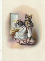 """QU 9-  """" CHEZ LE COIFFEUR """" - CHATS HUMANISES - CHAT COIFFEUR AVEC PEIGNE ET BROSSE - 2 SCANS - Katten"""