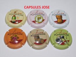 Série Complète De 6 Capsules De Champagne  - GENERIQUE (je Suis Champagne) - Collections
