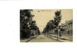 Mouscron Avenue Royale. - Mouscron - Moeskroen