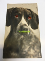 CPA CARTE A SYSTEME YEUX RPPC REAL PHOTO POSTCARD GLASS EYES CHIEN DOG - Hunde