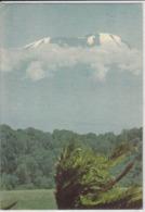 TANZANIA, TANSANIA -  KIBO At Mount KILIMANJARO  Nice Stamp - Tanzania