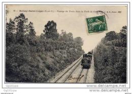 94 Boissy Saint Léger - Passage Du Train - Boissy Saint Leger
