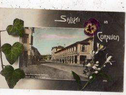 SALUTI DA CORNUDA - Treviso